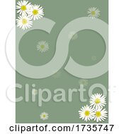 Vintage Blank Green Sheet With Chamomile Flowers