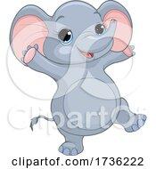 02/02/2021 - Cute Baby Elephant Jumping