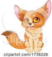 02/02/2021 - Cute Fennec Fox Sitting