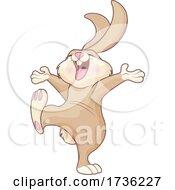 02/02/2021 - Happy Cheerful Bunny Rabbit