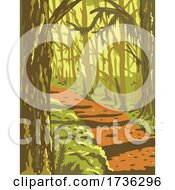 Hoh Rainforest In Olympic National Park Washington State United States WPA Poster Art by patrimonio