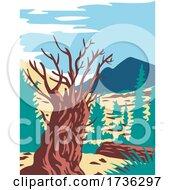 Prometheus Tree With Wheeler Peak In Nevada WPA Poster Art by patrimonio