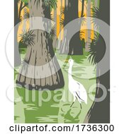Everglades National Park With Egret In Mangrove And Cypress Trees WPA Poster Art