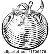 02/14/2021 - Tomato Vegetable Vintage Woodcut Illustration