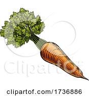 02/14/2021 - Carrot Vegetable Vintage Woodcut Illustration