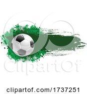 02/20/2021 - Grungy Soccer Ball
