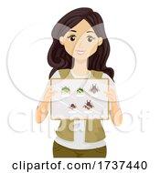 Teen Girl Show Bug Collection Illustration