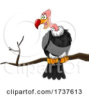 02/24/2021 - Condor Or Vulture On A Branch