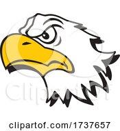 Bald Eagle Mascot by Johnny Sajem