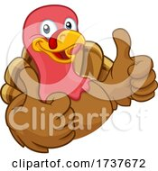 02/25/2021 - Turkey Thanksgiving Or Christmas Cartoon Character