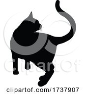 Silhouette Cat Pet Animal by AtStockIllustration #COLLC1737907-0021
