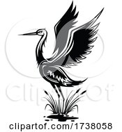 Black and White Heron by Vector Tradition SM #COLLC1738058-0169
