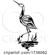 Black and White Heron by Vector Tradition SM #COLLC1738062-0169