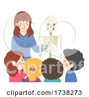 Kids Teacher Teach Skeletal System Illustration