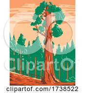 The General Grant Tree A Giant Sequoia Sequoiadendron Giganteum In Kings Canyon National Park California WPA Poster Art