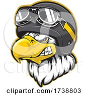 Pilot Bald Eagle Mascot