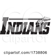 Poster, Art Print Of Indians Native American Logo