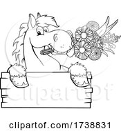 Black And White Horse With Flowers Over A Sign