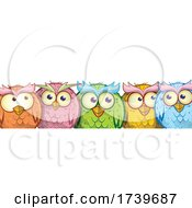 Group Of Colorful Owls