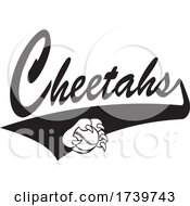 Paw Grabbing A Baseball And Cheetahs Text With A Swoosh