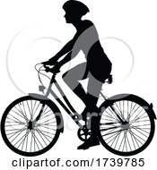03/13/2021 - Bike And Bicyclist Silhouette