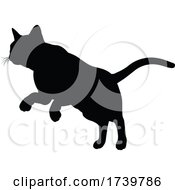 03/13/2021 - Silhouette Cat Pet Animal