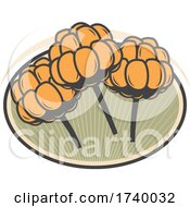 Swedish Cloudberry Design by Vector Tradition SM