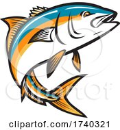 California Yellowtail Amberjack Forktail Mossback Yellowtail Tunis Or Seriola Dorsalis Ray Finned Fish Jumping Up Retro Style