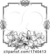 03/25/2021 - Plumeria Frangipani Tropical Flower Funeral Invite