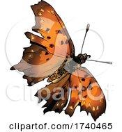 Polygonia Interrogationis Butterfly