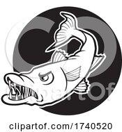 Barracuda Fish Mascot Over A Black Circle