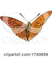 Argynnis Anadyomene Butterfly