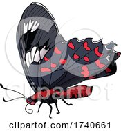Atrophaneura Kotzebuea Pink Rose Butterfly