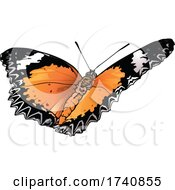 Cethosia Biblis Red Lacewing Butterfly