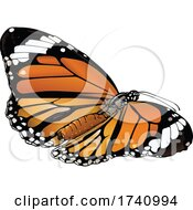 Danaus Genutia Common Tiger Butterfly