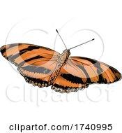 Dryadula Phaetusa Banded Orange Heliconian Butterfly