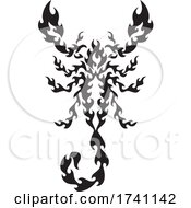 Black And White Flaming Scorpion From Above