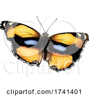 Junonia Hierta Yellow Pansy Butterfly by dero #COLLC1741401-0053