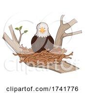 Bald Eagle Stick Nest Tree Illustration
