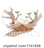 Eggs Sticks Bird Nest Tree Illustration