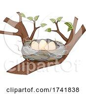 Eggs Birds Hair Nest Tree Illustration