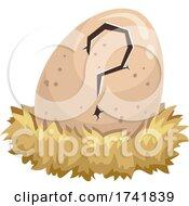 Egg Question Mark Crack Hatch Nest Illustration