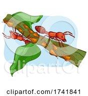 Ant Aphids Illustration