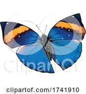 Kallima Inachus Butterfly by dero #COLLC1741910-0053