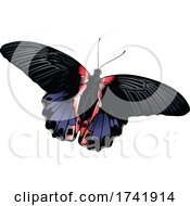 Papilio Rumanzovia Butterfly by dero #COLLC1741914-0053