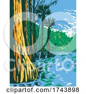 Subtropical Wetlands In Everglades National Park In The State Of Florida WPA Poster Art