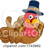 Poster, Art Print Of Turkey Pilgrim Hat Thanksgiving Cartoon Character