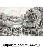 Poster, Art Print Of Horses And Ducks At A Pond