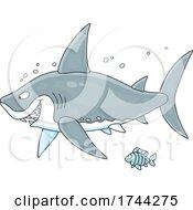 Fish And Shark