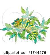 Chameleon Lizard On A Branch